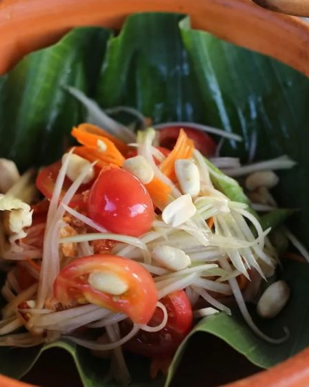 Salade de papaye verte